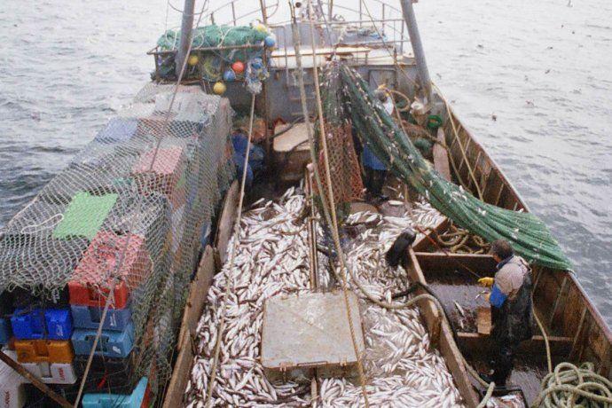 Argentina y Rusia firmaron un convenio de cooperación de pesca