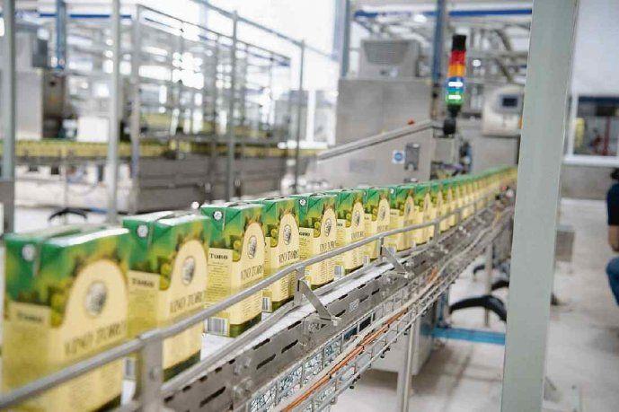 inversión. La planta de vinos de mesa involucró u$s40 millones. Ahora la cooperativa busca posicionarse en vinos de segmento medio y alto.