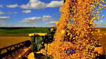 Gobierno augura que superará test de los mercados, mientras espera dólares de la cosecha