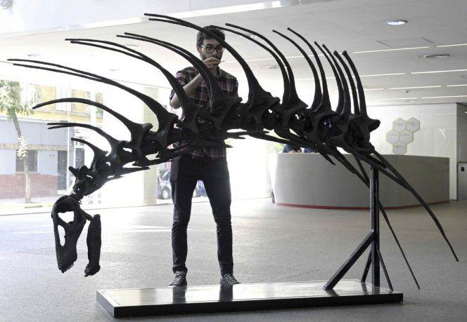 El dinosaurio saurópodo Bajadasaurus vivió en el período Cretácico, hace 120 millones de años.