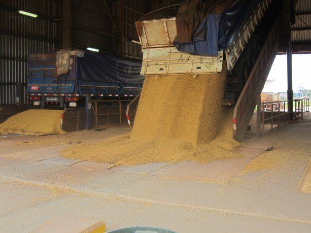 Hace años que Argentina -el mayor proveedor global de harina de soja- intenta acceder al mercado chino.