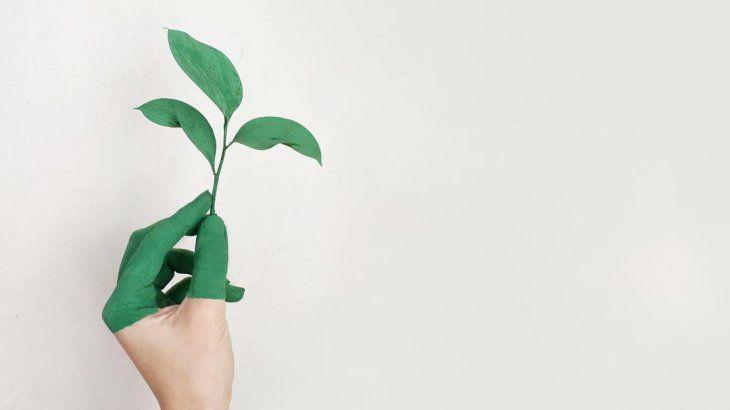 La membresía de Triple Impacto estará disponible para empresas sustentables.