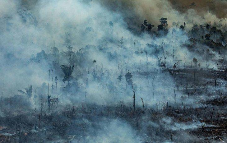 Francia, Alemania, Irlanda y la Comisión Europea criticaron la falta de interés del presidente brasileño, el ultraderechistaJair Bolsonaro, en la protección del medio ambiente.