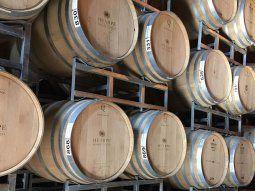 Las exportaciones de vino alcanzaron casi 180 millones de litros entre enero y mayo.