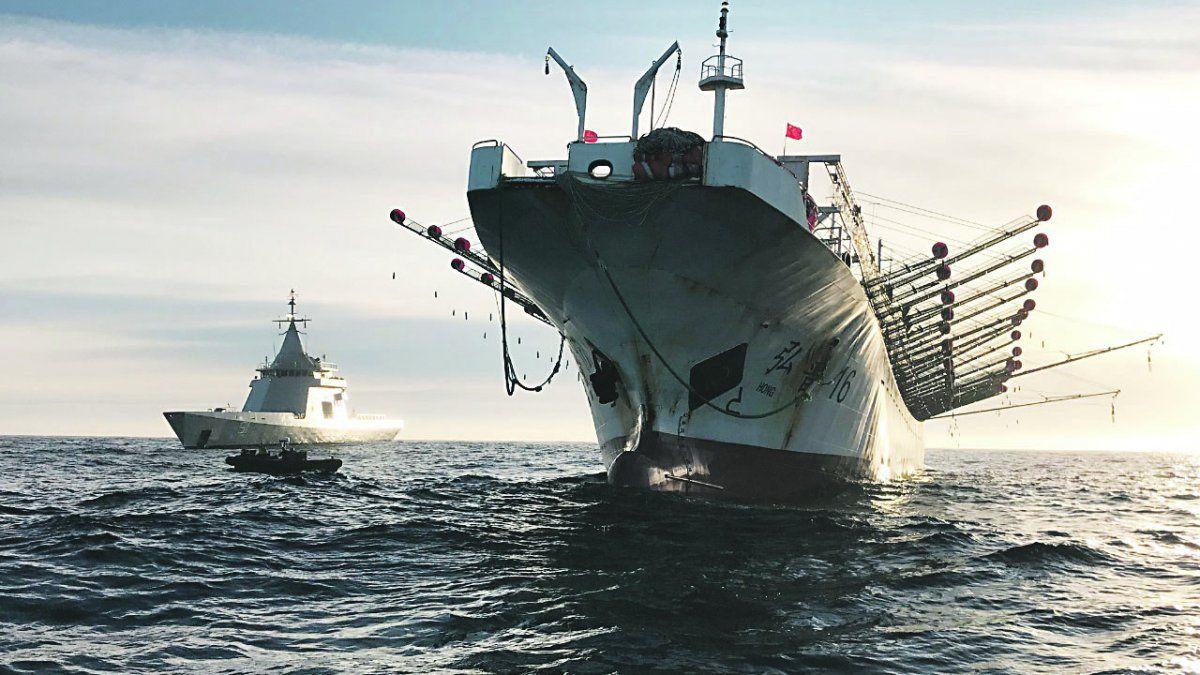 Multas irrisorias, otra manera de fomentar la pesca ilegal