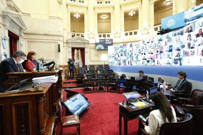CristinaFernández de Kirchner y Martín Lousteau, cara a cara, en el recinto del Senado durante la sesión virtual.