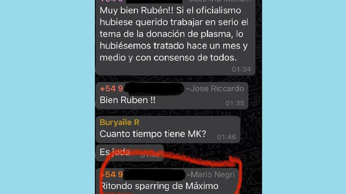 Arde chat de Cambiemos: Ritondo sparring de Máximo y Macri rompe boleta 2021 | Macri, UCR, PRO