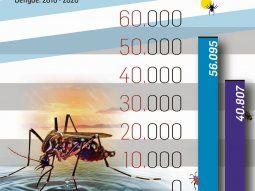 alarma en el pais: confirman 54.870 casos de dengue (es el mayor registro historico)