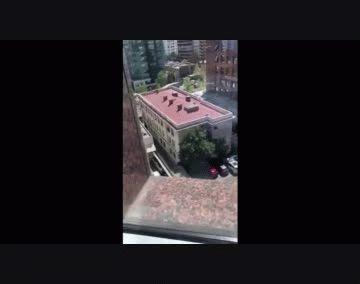 Video publicado en Twitter por quienes presenciaron la invasión de los quirópteros.