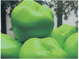 Las series más famosas de Genia Streb son las manzanas. Apasionada por esta fruta, lo reflejó en pinturas que llegan a los umbrales de las gigantografías.