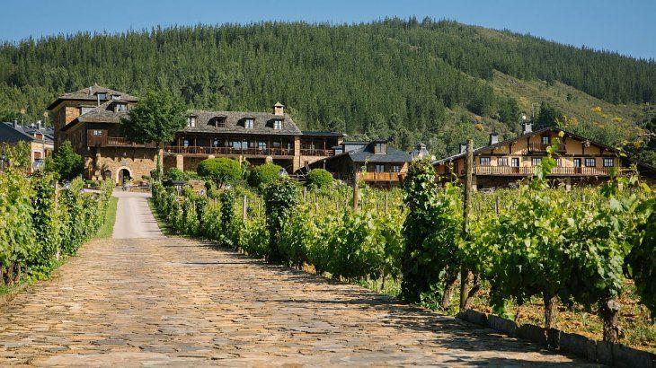 Las condiciones de El Bierzo favorecen notablemente el cultivo de la uva.