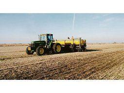 Siembra. Dependiendo del destino comercial del cultivo el productor puede apuntar a un ciclo particular.