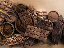 Crece exponencialmente la tendencia de Bean to Bar, adaptada por los chocolateros que quieren brindar un producto Premium.