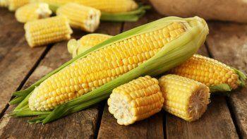 campo vs gobierno: cruces por las exportaciones de maiz