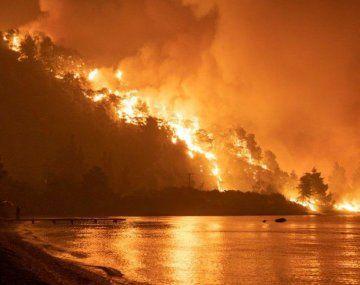 Los incendios que destruyeron más de 100 mil hectáreas en Grecia están bajo control