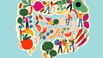 estrategias faciles para cuidar tu microbiota este invierno