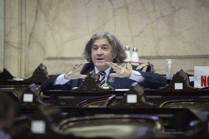 El titular del interbloque Unidad Federal para el Desarrollo, el diputado mendocino José Luis Ramón.