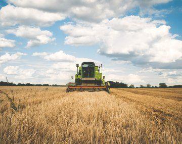 Agroindustria: el Gobierno enviará al Congreso un proyecto de ley para potenciar el sector