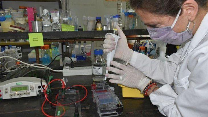 El convenio entre el INTA y Bagó le permite al grupo de investigación de Bariloche contar con fondos para realizar los estudios utilizando la plataforma de nanovacunas.