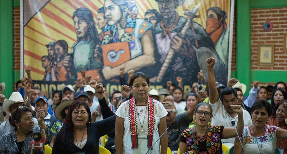 En diálogo con ámbito.com la vocera del Concejo Indígena de Gobierno
