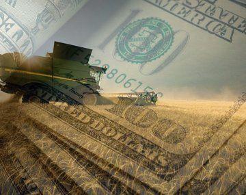 Julio inició con fuerte liquidación de divisas del agro (u$s420 millones)