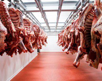 El stock de ganado vacuno cayó 1,7% en el 2020. La disminución de terneros/as se debe a la falta de vientres que se vio en el 2019.