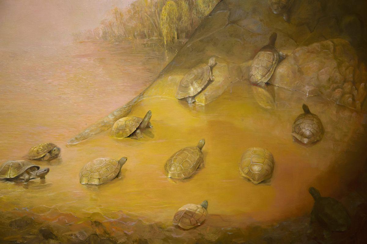 lula mari. Las tortugas tienen en sus pinturas diversos sentidos simbólicos, al igual que otros animales.