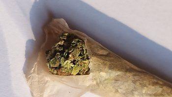 Qué dijo Alberto Fernández sobre la despenalización del consumo de marihuana
