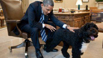 Obama y Bo.