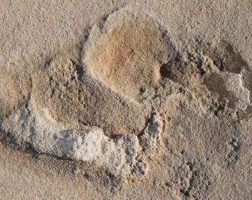 Hallan las que podrían ser las huellas humanas más antiguas de la historia