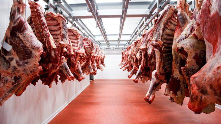 Carne: Gobierno lanza créditos por $10.000 millones  para incentivar producción