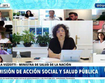 Carla Vizzotti se presenta ente la Comisión de Salud de la Cámara de Diputados.
