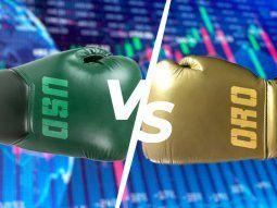 El oro caía este martes debido a que el dólar subió y a que los mercados consideraron la probabilidad de que la Reserva Federal de EEUU pueda indicar una eventual reducción de los estímulos.