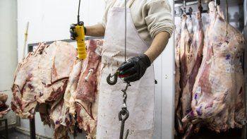 solmi estimo que este ano las exportaciones de carne estaran cerca del segundo record historico