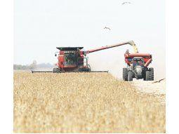 En el inicio de la cosecha de soja, se llegó a un 10% de los 59 millones de toneladas que se estima se podría alcanzar en esta campaña.