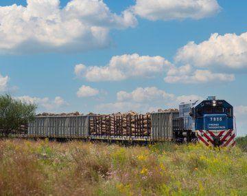 El Ministerio de Transporte de la Nación, mediante una resolución firmada por su titular, Alexis Guerrera, oficializó la decisión de rechazar la prórroga de las concesiones ferroviarias de las líneas de carga Sarmiento, Mitre y Roca.