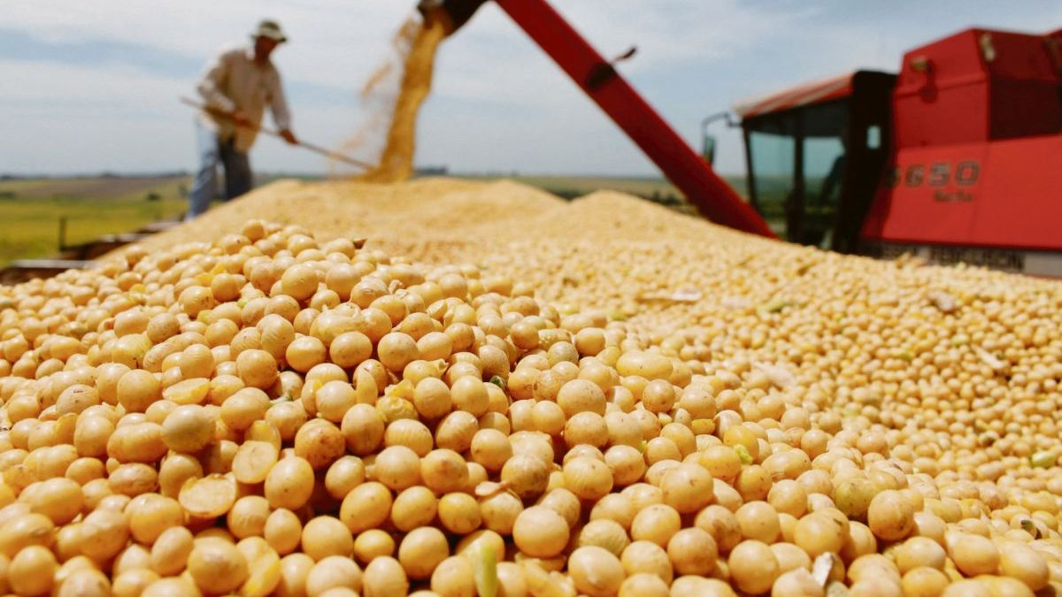 Soybeans have sunk and bottomed out since December 2020