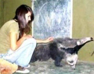 MelisaNoelia Casco sufrió el ataque el 10 de abril de 2007.