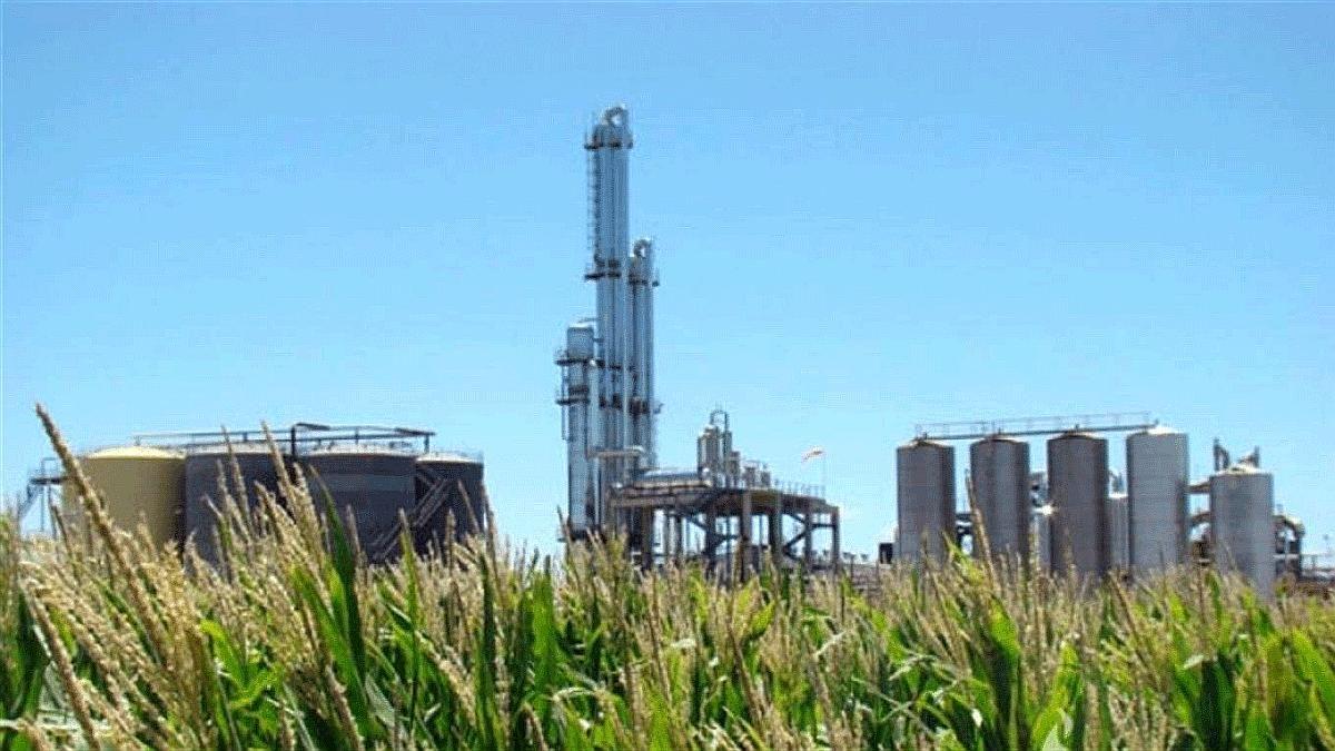 El Gobierno prorrogará por decreto la ley de Biocombustibles