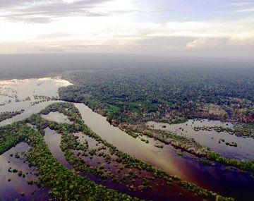 UICN aprueba moción para preservar el 80% la amazonia en cuatro años