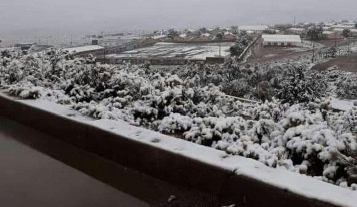 Nieve en Jujuy: la sorpresa en los valles en pleno verano