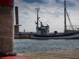 Cada año la industria pesquera descarta más de 110.000 toneladas de merluza en buen estado que son devueltas sin vida al mar.