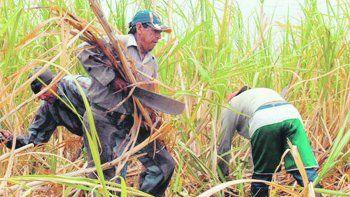 Efectos. El sector, en alerta por la indefinición en relación a la vigencia de la ley actual de biocombustibles.