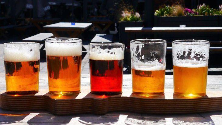 La primera levadura fermentadora argentina empleada en cervecería
