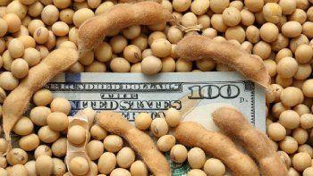 Científicos argentinos lograron transformar los residuos de la soja en productos de alto valor nutricional y descubrieron la fórmula para reutilizar el okara.