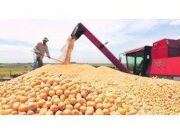 Cuestión de mercado. En el caso de los commodities agrícolas el precio viene formado, y cualquier gravamen distorsivo que se aplique en el comercio le quita rentabilidad a toda la cadena.