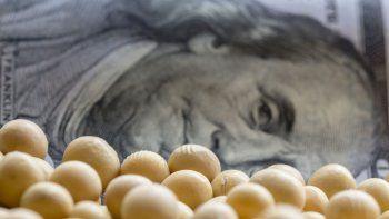 El precio de la soja sigue en alza y se acerca lentamente a los u$s600 la tonelada.