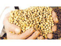 Mercado asiático. China podría dejar de comprar soja de Norteamérica y Sudamérica se convertiría en el principal destino para abastecerse.