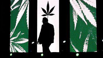 Matáis Kulfas desea impulsar la industria del cannabis