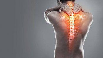 dia internacional de la columna vertebral: tips para evitar dolores de espalda y cuello